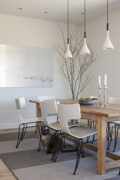 Aplomb Suspension Lamps hang above the dining table, which is set above a custom area rug by the client's interior design firm. Sally, one of the cats, is seen here.