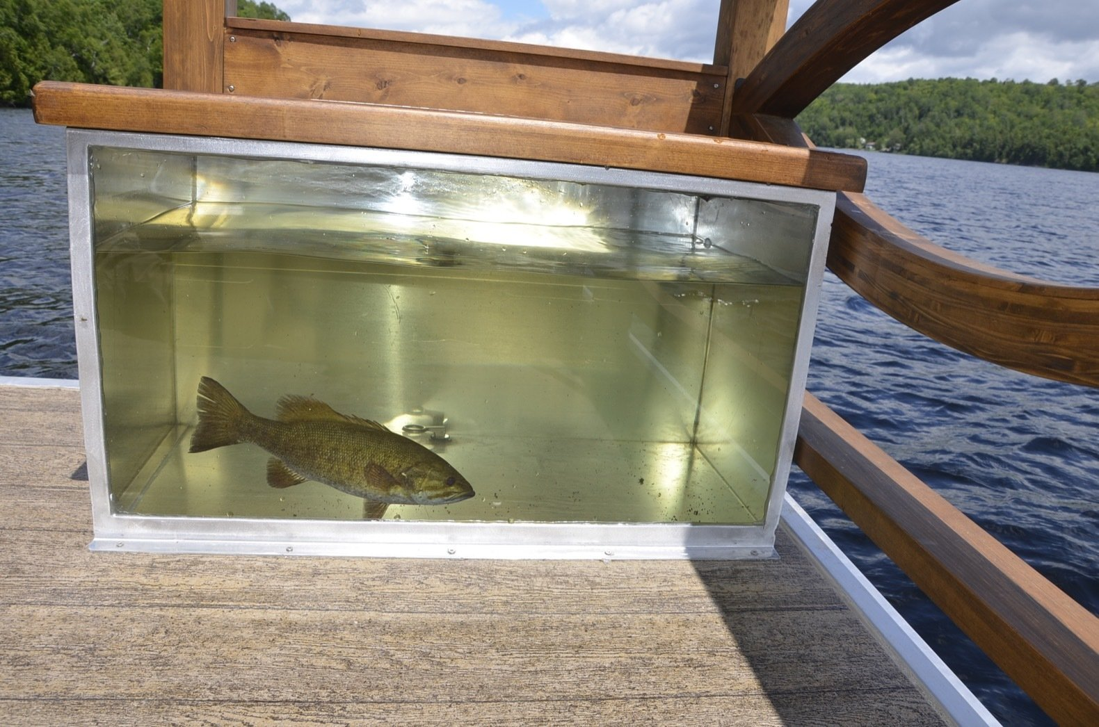 Outdoor, Wood Patio, Porch, Deck, and Small Patio, Porch, Deck Le Koroc offers many custom options, including this fish tank with a pump complete with a fish cleaning board.   Photo 12 of 15 in Kick Back in This Tiny, Solar-Powered Houseboat For $61K