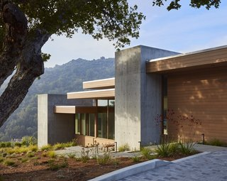 Vertical cast-in-place concrete walls break up the building's horizontal forms.