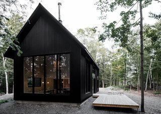 The vertical corrugated metal siding mimics the verticality of the trees.