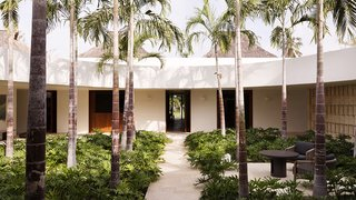 Populated by palms, the circular garden occupies the heart of the home.