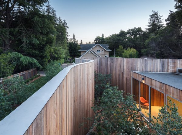 """""""Unlike its neighbors, this house is not fenced off at it's street perimeter,"""" notes the firm. """"A meadow of native grasses flow from the sidewalk with existing oaks, redwoods and newly planted birch trees flowing inside and outside of the curving wooden wall. """""""