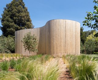 The sinuous Western Red Cedar wall is steel-framed with wood infill studs.