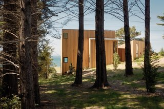 Vertical cedar planks clad the exterior of the house, which is segmented to follow the natural slope.