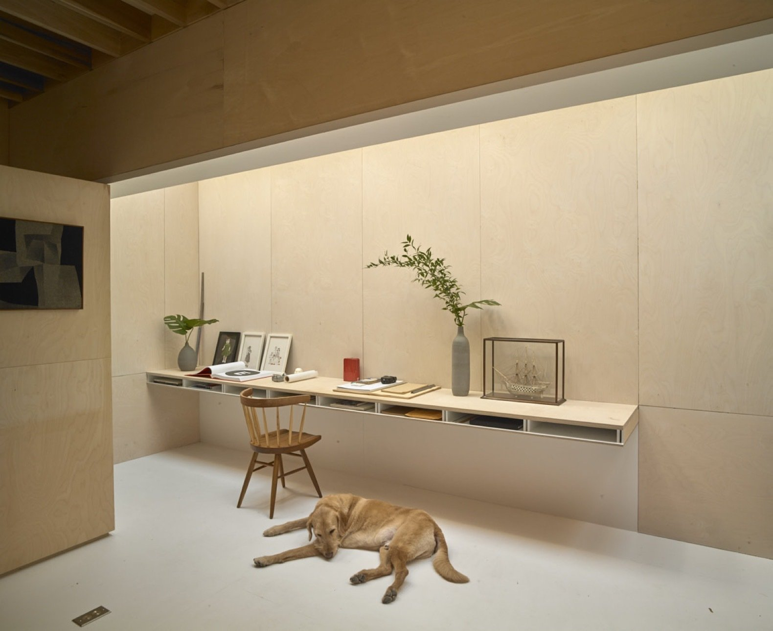 ollie the clients dog rests next to the floating desk built of painted poplar and white washed baltic birch plywood