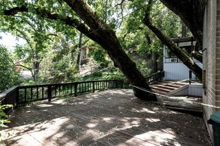 The home is built around an existing oak tree.