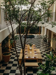 Local flora is brought indoors to inject life into the atrium. The Chaca tree serves as a major focal point.