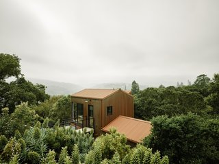 A Tree House-Like Midcentury Home Peeks Above the Forest Canopy