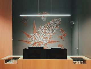 """Cannabis murals by local artist Jesse Hora from Make & Co. were added behind the cannabis humidor and transaction counters in what Grondin calls their """"'fine art' approach to the natural science and beauty behind the cannabis plant."""""""