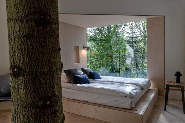 Built around a live tree, the cabin reinforces its connection to nature with a natural material palette and large windows that pull the outdoors in.