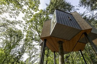 Zinc-clad extensions jut out from the main timber structure to frame panoramic views of the forest from all directions.