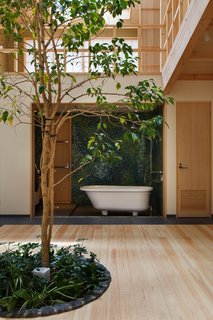 "The bathroom was positioned to face the living room so that the family could enjoy an ""open-air bath"" with view of the tree. ""I wanted to see a combination of two greens,"" explains Chikamori. ""One is the central tree as a living creature and another is manmade green on the bathroom wall. They emphasize each other's charm."""