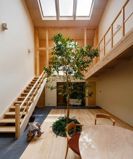 """""""The column-less, double-height living room is unusually big and open compared to most Japanese houses,"""" says Chikamori. """"It's thanks to the structural engineers, who are experts on a relatively new technique for building wooden, rigid-frame structures."""""""