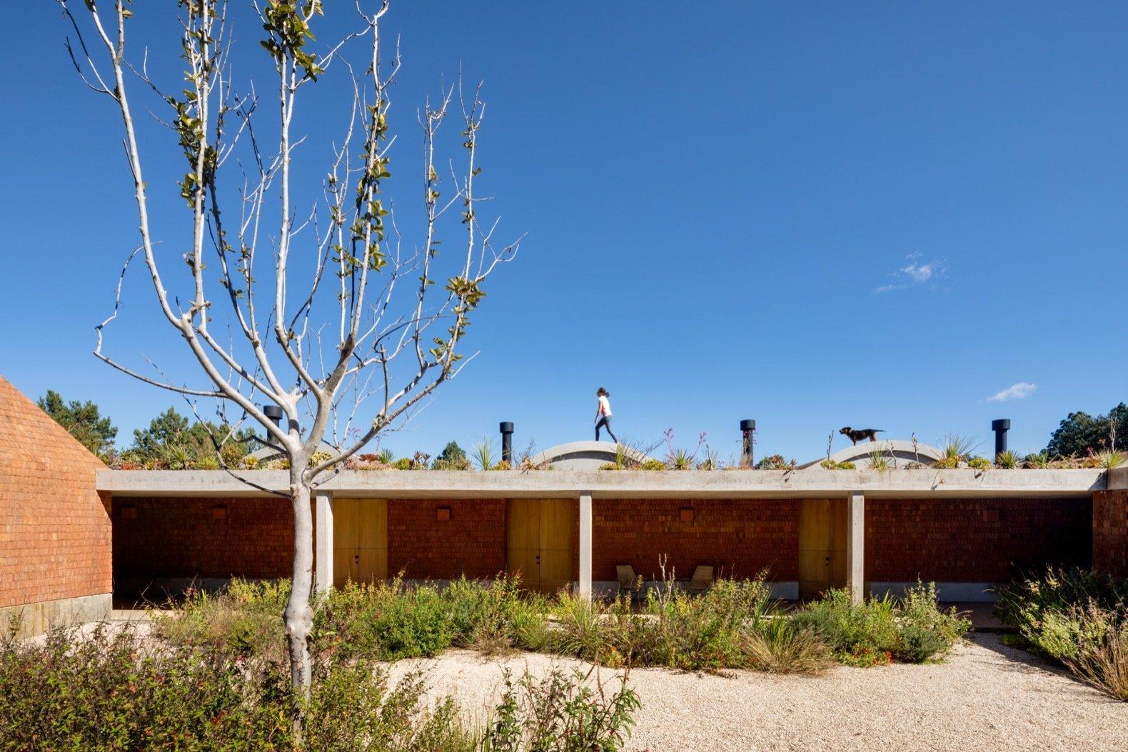 Casa Terreno by Fernanda Canales Arquitectura courtyard