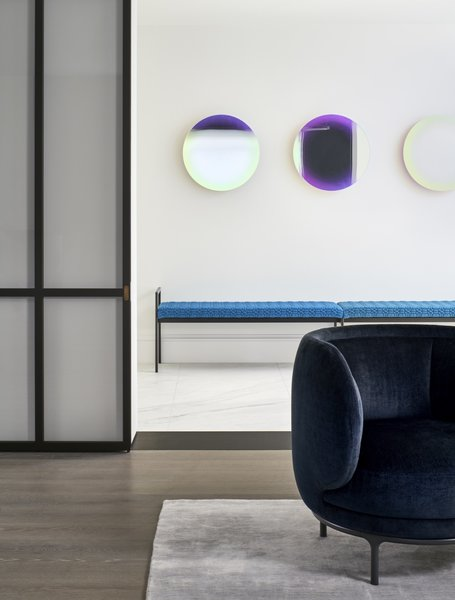 Dark blue and pink accents, seen in these chromatic circles, are peppered throughout the home and appear in the art, area rugs, and furnishings.
