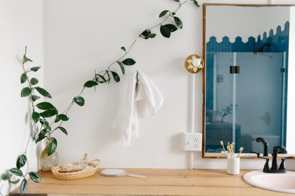 "The climbing wax plant (Hoya Carnosa) seen in the bathroom and kitchen started as clippings from a century-old wax plant belonging to Claudia's mother. ""I like to think this plant was from the same era that the row home was being built,"" she adds."