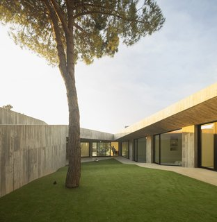 The interior courtyard was constructed with artificial turf and built around an existing Italian stone pine tree.