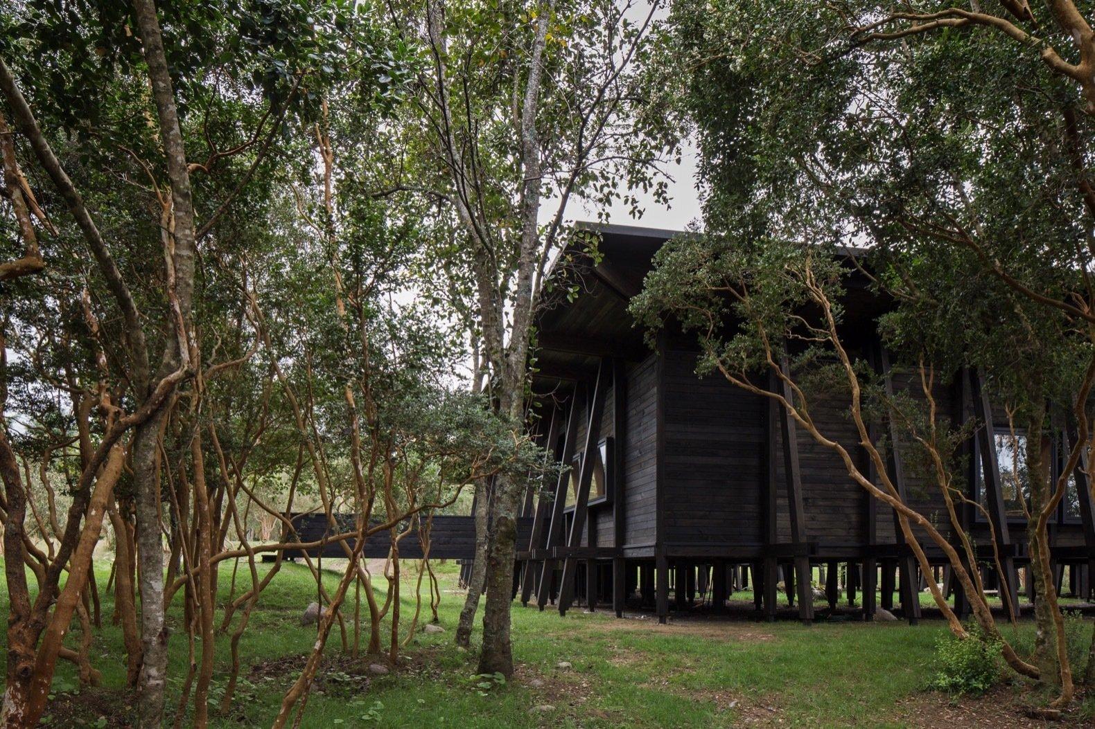 Patio House in Lago Ranco exterior
