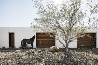The O-asis house is set on an elongated 1.7-acre site on a horse property area of Phoenix, north of Piestewa Peak within the Phoenix Mountain Preserve.