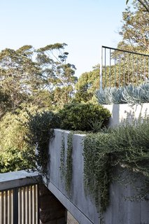 In situ concrete planter beds filled with creepers and succulents expand the lush garden.