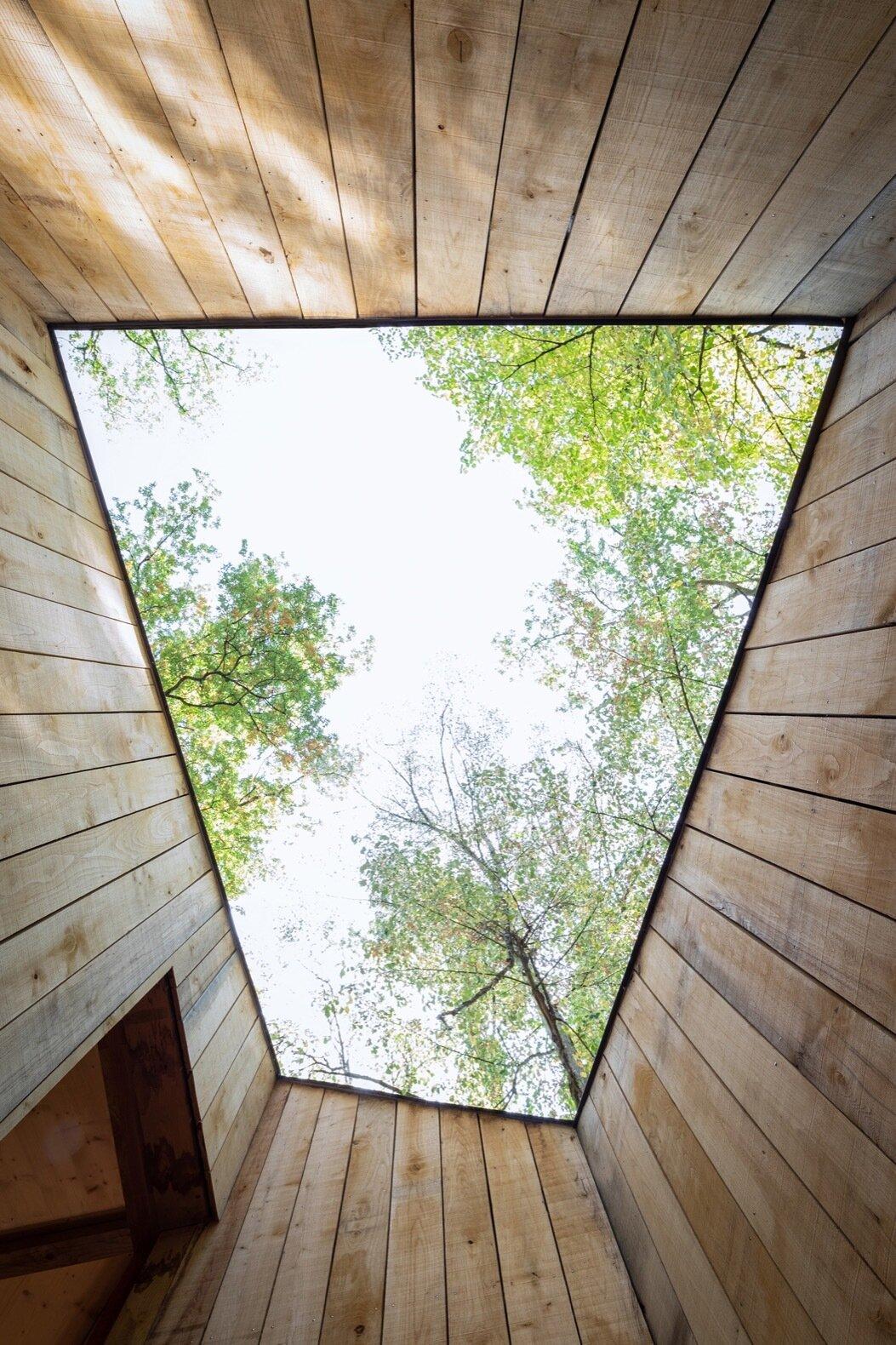 100% Wooden House courtyard