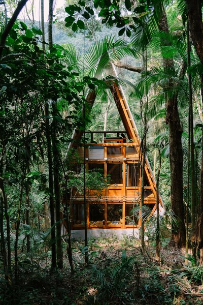 The Monkey House is located in a secondary forest in the Brazilian Atlantic Rainforest that had been used as a banana plantation decades ago. Brajovic has turned the area, which is located on the border of Bocaina National Park, into an ecological sanctuary called Aldeia Rizoma that's now home to several eco-friendly homes.