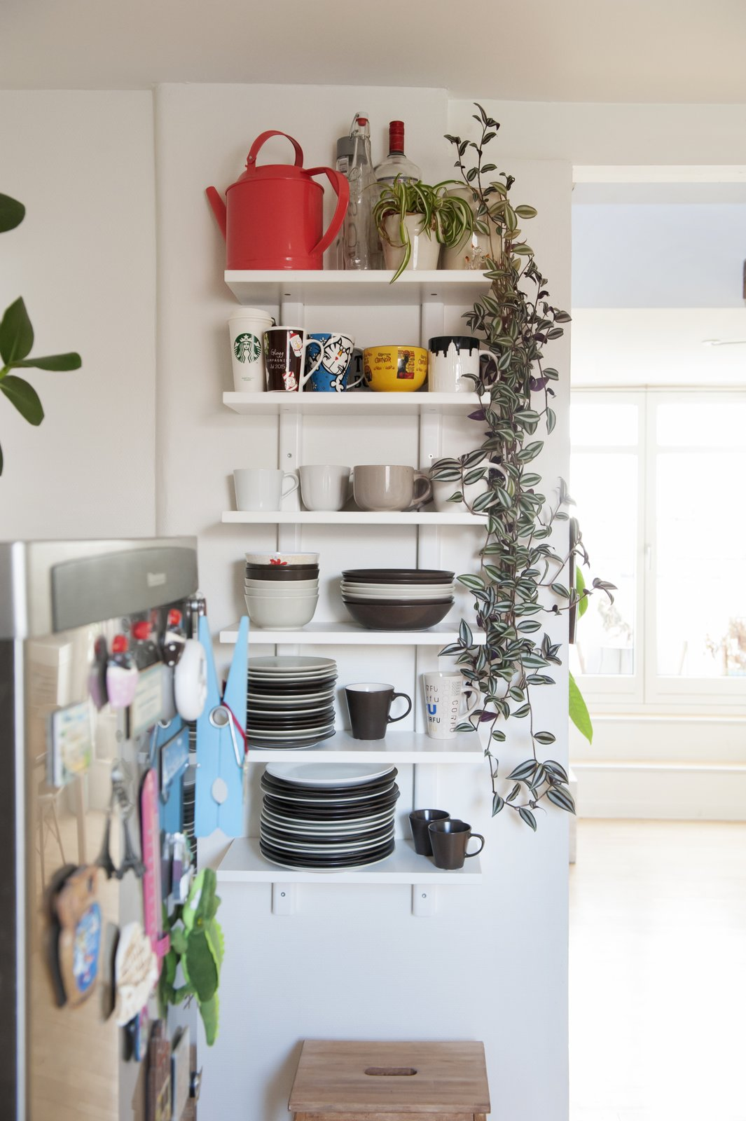 Kitchen and Refrigerator open kitchen shelving with climbing plant  Bringing Nature Inside by Petra Ford