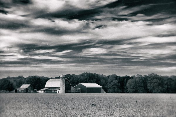 About the Rural Landscape Photograph:  Red Barn in Golden Field is a vintage black and white landscape photograph of a beautiful red barn in the center of a golden field of dried crops. This photograph was created in Middletown Delaware in the early morning hours of the fall season. This image is also available in Color, a Colorized, and a Black and White version.  Title: Red Barn in Golden Field Vintage Landscape Photographer: Melissa Fague Genre: Landscape Photography Item ID#: LAND-0020-V  This landscape photograph is one of many available for purchase through www.pipafineart.com. You have your chose of size and print materials. All of our landscape pictures are printed on high quality materials and the highest quality ink for longevity. Each photo print is also coated with a soft luster finish. If you need assistance we are always available; please contact us with any questions.