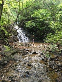 55  acres of pristine nature