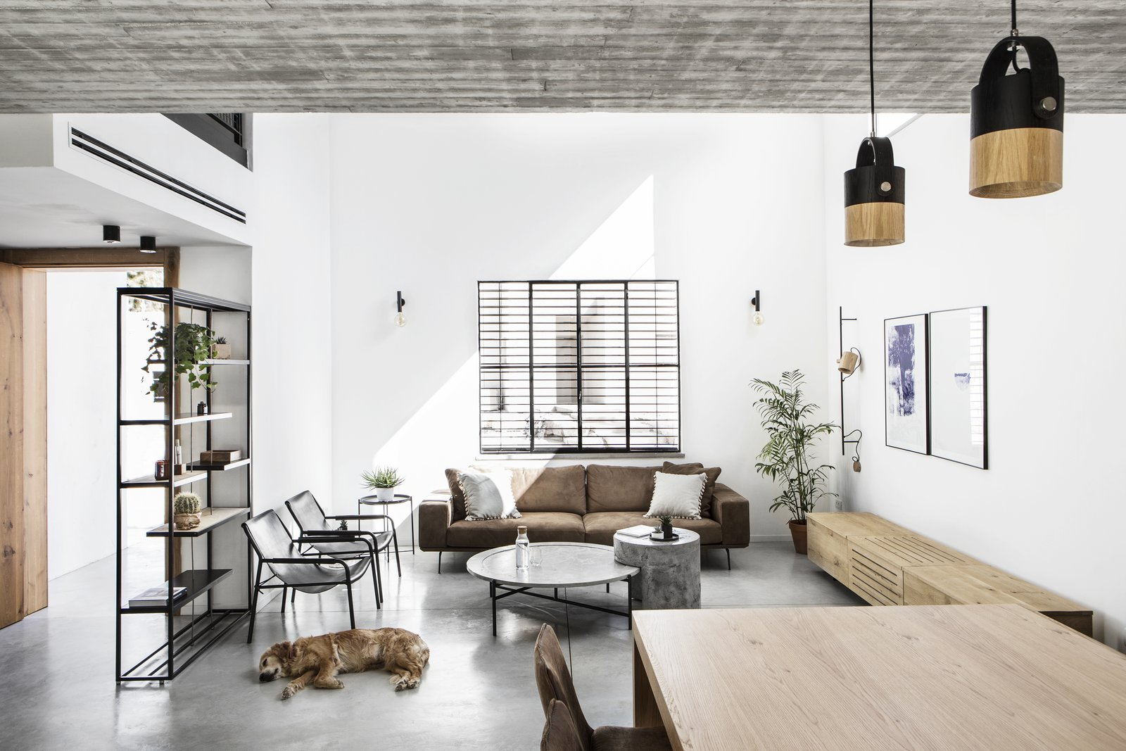 Living Room, Chair, Sofa, Bookcase, Coffee Tables, Pendant Lighting, Wall Lighting, Ceiling Lighting, and Concrete Floor The entrance, living room, and Mika :)  Nir Am House by Shir Shtaigman
