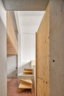 Concrete and timber steps and wood structural strips ceiling