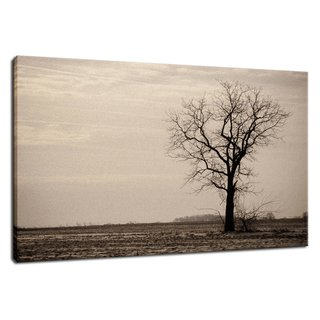 "Lonely Tree Rural Landscape Photo Signed Limited Edition Fine Art Canvas Print  Our limited edition canvas prints are created using 1.5"" stretcher bars that have strength & resist twisting caused by inferior stretcher systems & time. We add additional support for longer spans with a UV luster coating (which helps protect the ink & canvas from fading & discoloring), black backing & ready to hang. Life expectancy of these collectible fine art photo prints is up to 300 years depending on the care. All of our landscape photography fine art prints are inspected, numbered & signed by landscape and nature photographer Melissa Fague before shipping.  Canvas Print Sizes Available: 11"" x 14"" 16"" x 20"" 20"" x 24"" 20"" x 30"" 24"" x 36""  Other Print Options: This photograph is also available on a variety of print media types in a variety of sizes to fit your decorating needs. For more information on this and other stunning landscape photographs please visit www.pipafineart.com  About the Rural Landscape Photograph: Lonely Tree is a landscape photograph that was created in a barren field of Middletown, Delaware. Photograph was aged and a grain effect was added using Photoshop.  Title: Lonely Tree Landscape Photographer: Melissa Fague Genre: Landscape Photography Item ID#: LAND-0107"