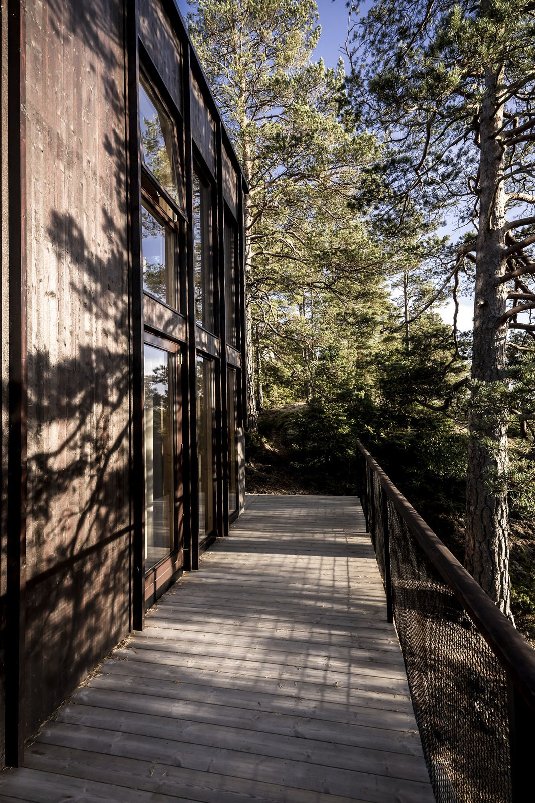 Exterior, Shingles Roof Material, Flat RoofLine, House Building Type, and Wood Siding Material House meets nature  Woodland house
