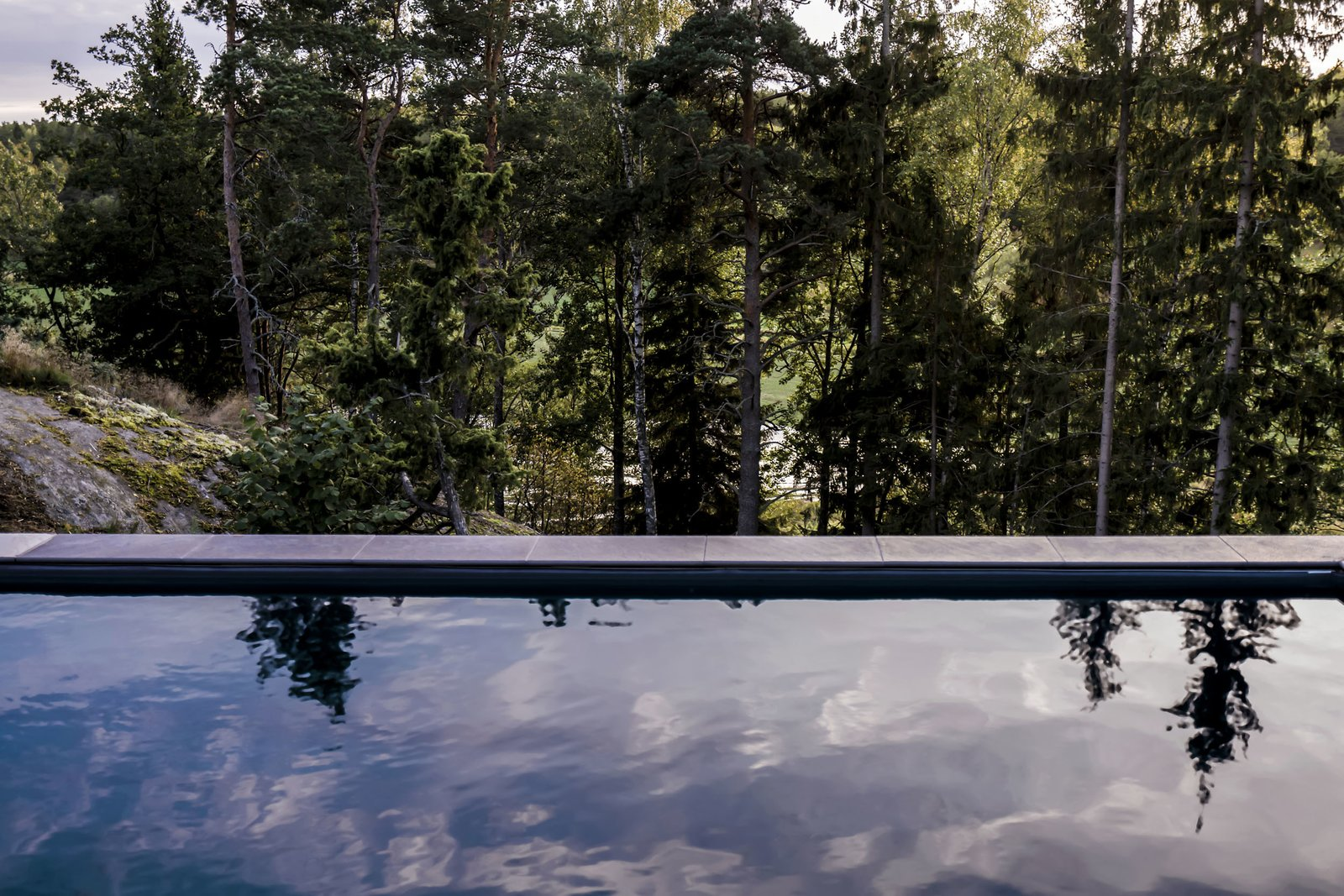 Exterior A black pool in the midst of the forest landscape - Yes!  Woodland house