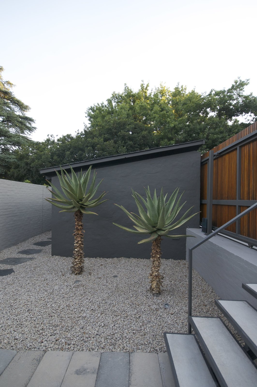 Outdoor, Walkways, Hardscapes, Front Yard, Garden, Gardens, and Shrubs In the entrance courtyard, two large aloes forms a green contrast to the otherwise grey color palette.  Grey House