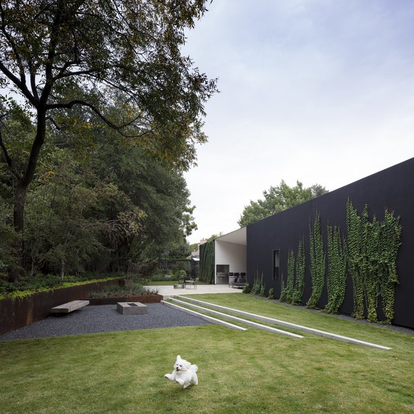 The backyard is a structured and geometric landscape. The fire pit doubles as a drainage pond for rainwater. Eventually, the ivy will completely hide the black stucco so one is surrounded by vegetation.