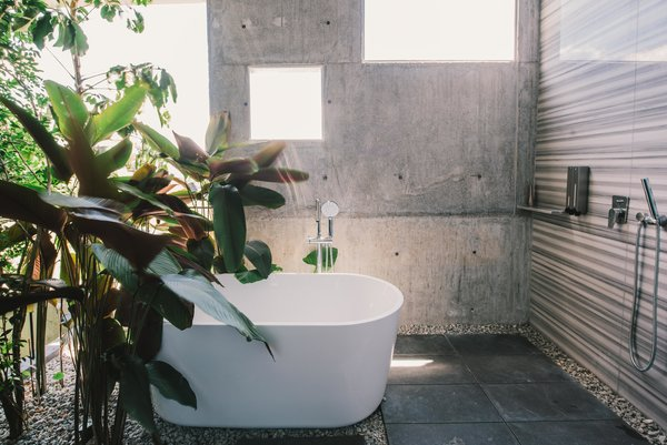 The Window House by Formzero features a serene garden bathroom, complete with forest views.