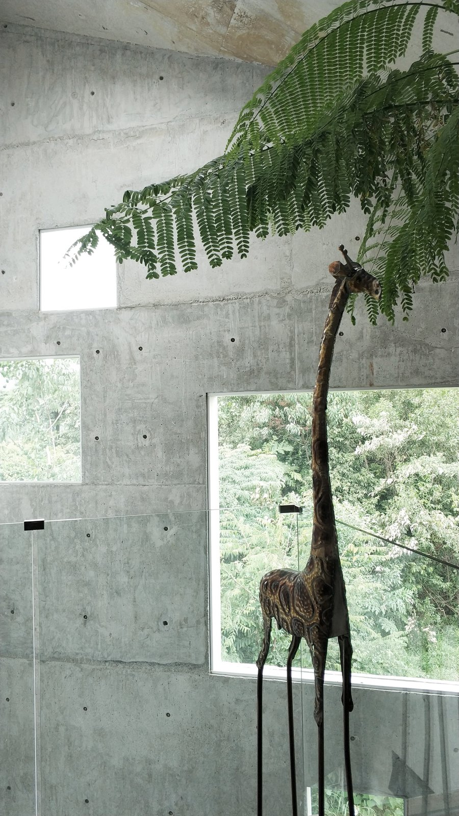 Giraffe in the house Tagged: Windows and Skylight Window Type.  The Window House