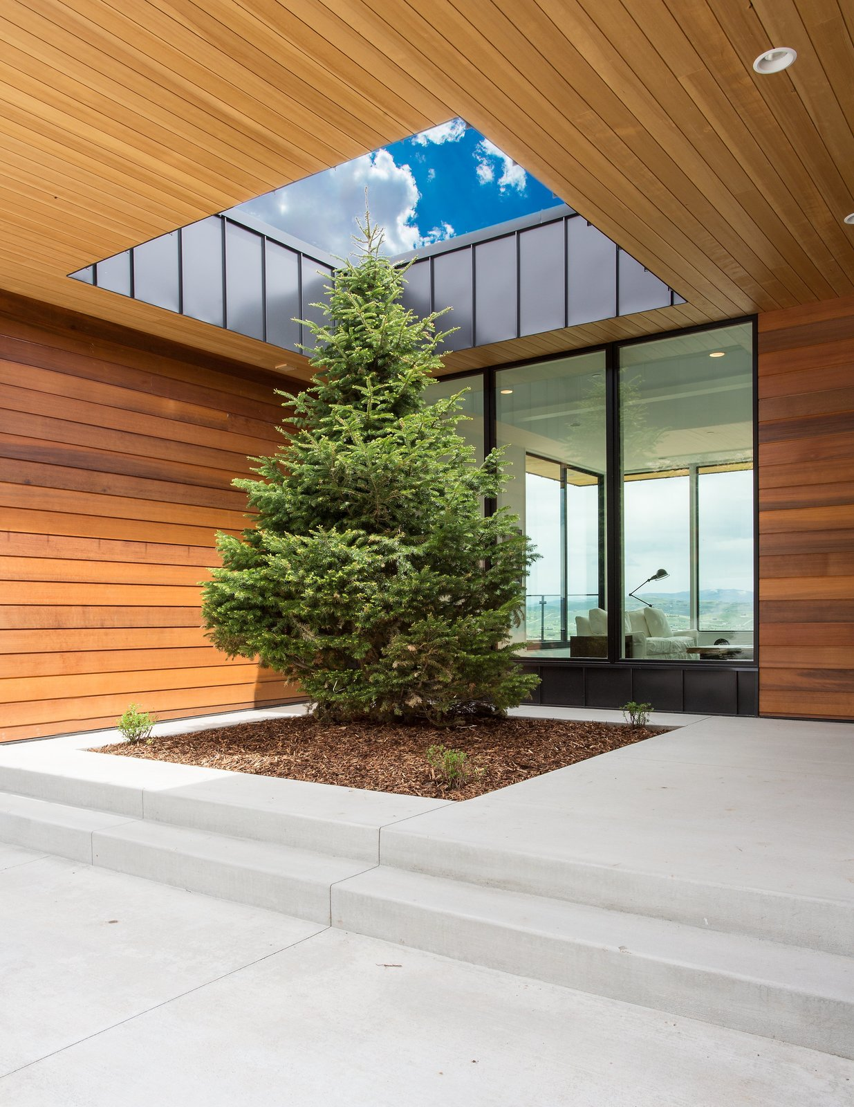 Exterior Keeping with the natural surroundings and color this tree has room to grow and enhance the landscape.  Purple Sage