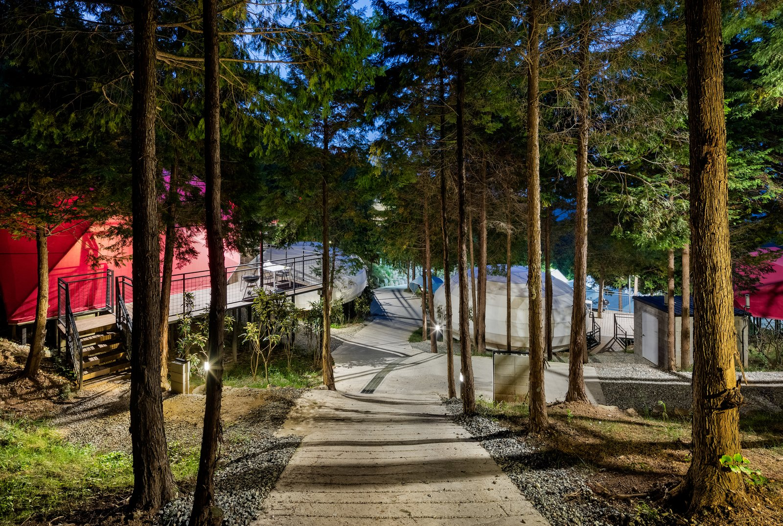 Outdoor, Walkways, Trees, and Woodland Nature is all around at this glamping resort, which is nestled in forests of cypress trees.  Photo 2 of 7 in Colorful Glamping Pods Dot a Forest in South Korea
