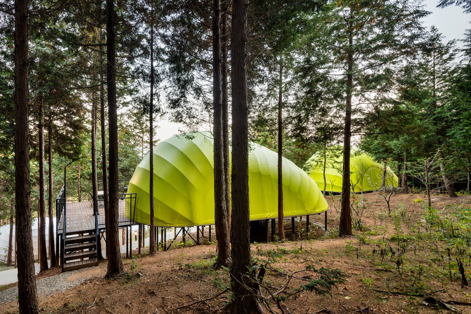 """Exterior and Tent Building Type The terraces help to """"strengthen the feeling among guests that they are immersed in nature.""""  Photo 3 of 7 in Colorful Glamping Pods Dot a Forest in South Korea"""