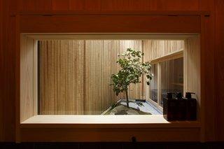 "mini ""ZEN"" garden  (view from bath)"