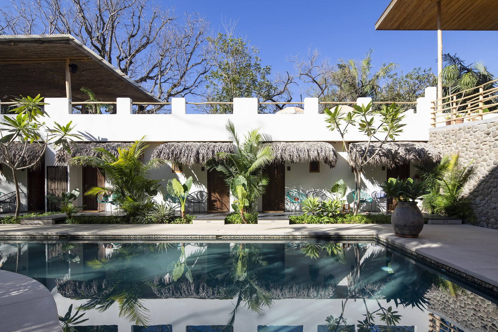 Outdoor, Trees, and Large Pools, Tubs, Shower Poolside rooms  Nomadic Nosara