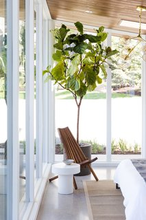 A wooden chair and fiddle leaf fern are calming accents in the sleeping area.