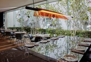 Floor-to-ceiling glazing connects Mr Porter with a vegetated atrium that infuses the space with light and life.