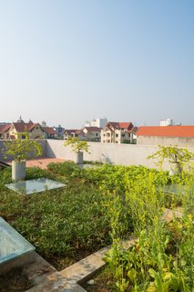 The rooftop garden not only provides daily food for the family, but also a place to rest every afternoon.