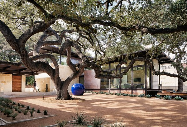 Giant oak trees dominate, and offer coveted shade, in the courtyard.