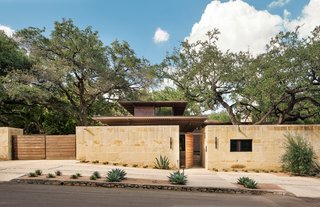An Imposing Oak Tree Serves as a Living Sculpture in This Texas Home