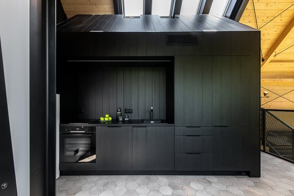 "On the upper level, a black ""shed"" cleverly incorporates the kitchen, bathroom, and storage."