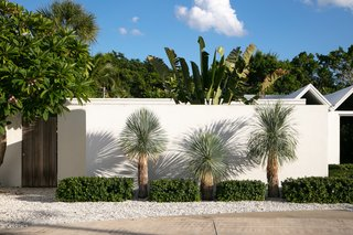 The wall-wrapped courtyard provides private outdoor space and blocks noise from the facing street.